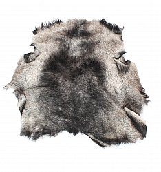 Sheepskin from Sweden # 40