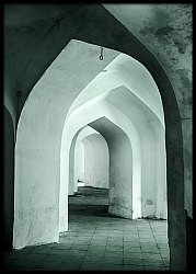 Man Singh Palace Arches