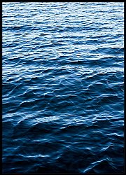 Water Surface Texture
